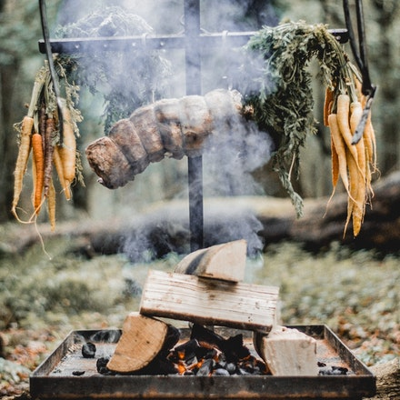 Foraging & Fire